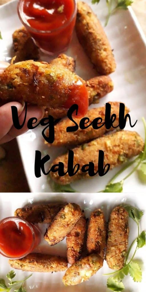 party appetizer seekh kabab